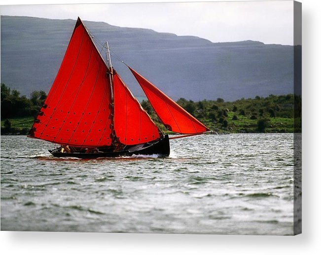 Co Galway Acrylic Print featuring the photograph Galway Hookers, Kinvara, Co Galway by The Irish Image Collection