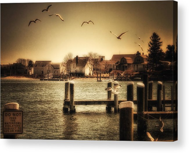 Cape Cod Acrylic Print featuring the photograph Harbor View by Gina Cormier