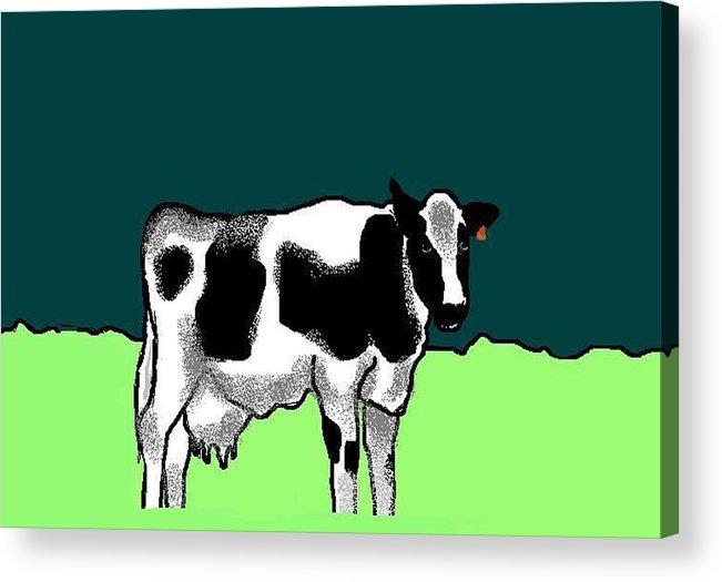 Cow Acrylic Print featuring the digital art Holsteiner by Carole Boyd