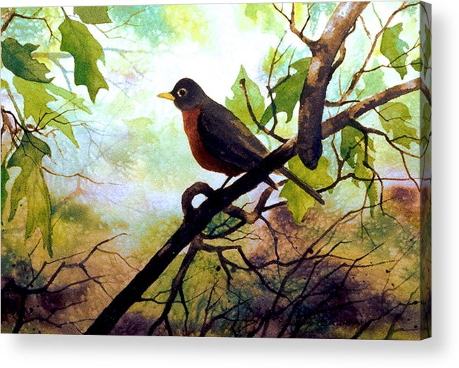 Wild Life Acrylic Print featuring the painting Just Ate And Cooling Off by Brooke Lyman