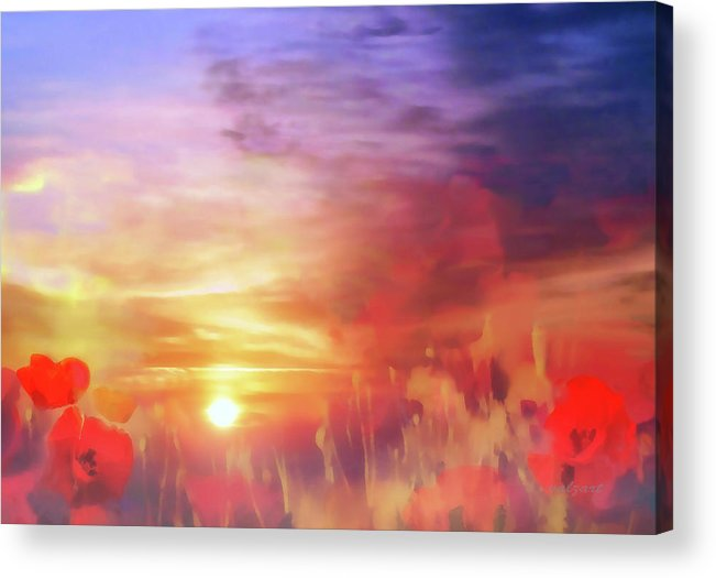 Landscape Acrylic Print featuring the photograph Landscape Of Dreaming Poppies by Valerie Anne Kelly