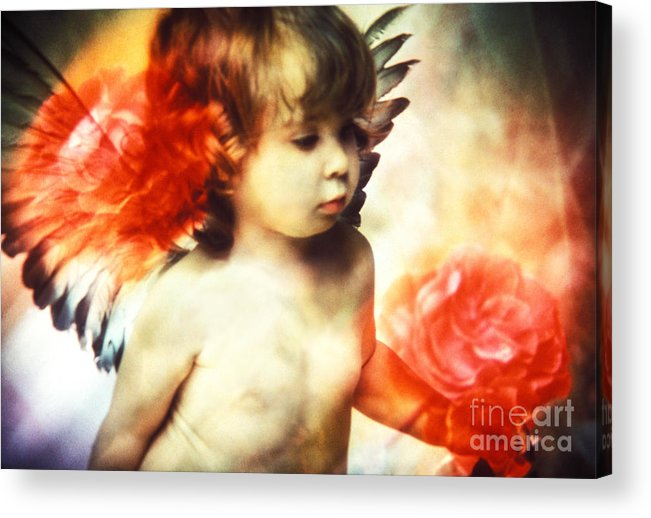 Angel Acrylic Print featuring the photograph Little Angel With Rose by Renata Ratajczyk