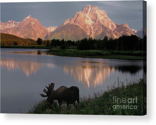 Grand Teton Acrylic Print featuring the photograph Morning Tranquility by Sandra Bronstein