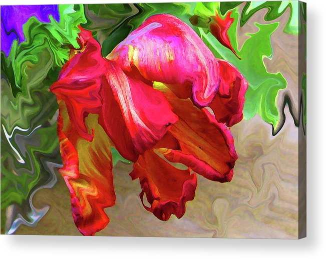 Abstract Acrylic Print featuring the photograph Parrot Tulip by Kathy Moll
