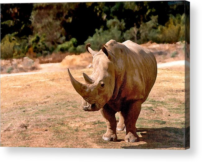 Animal Acrylic Print featuring the painting Rhino by Steve Karol