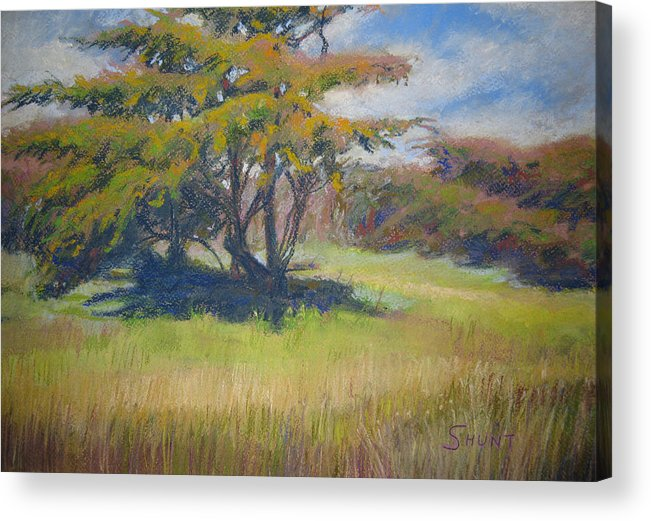 Tree Acrylic Print featuring the painting Shade by Shirley Braithwaite Hunt