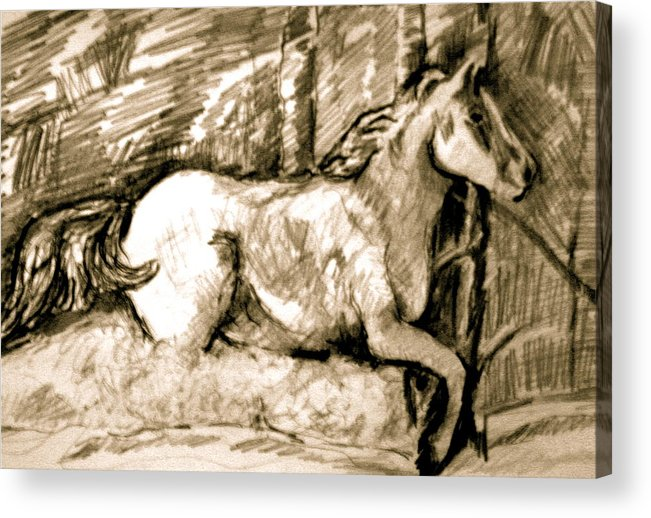 Horse Acrylic Print featuring the drawing Snow Drift Delight by Dan Earle