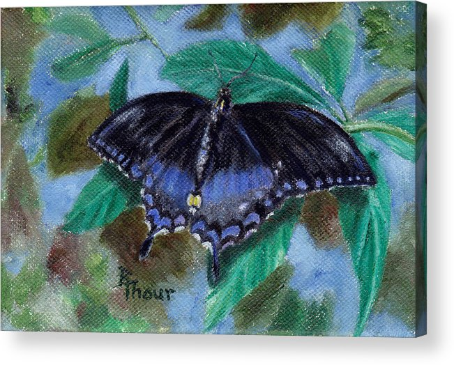 Butterfly Acrylic Print featuring the painting Spread Your Wings by Brenda Thour