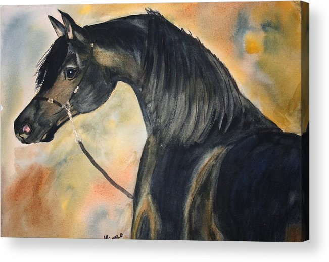 Horses Acrylic Print featuring the painting Sunlit Splendor by Michele Turney
