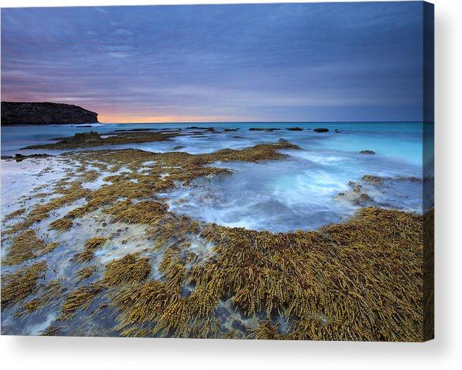 Pennington Bay Acrylic Print featuring the photograph Sunrise Beneath The Storm by Mike Dawson