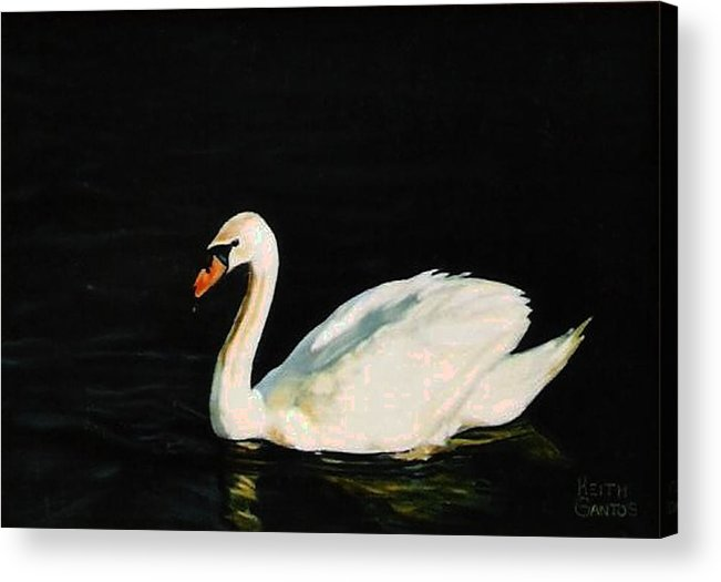 Swan Acrylic Print featuring the painting Swany River by Keith Gantos
