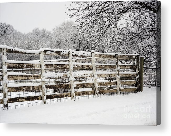Kansas Acrylic Print featuring the photograph The Cattle Pens by Fred Lassmann