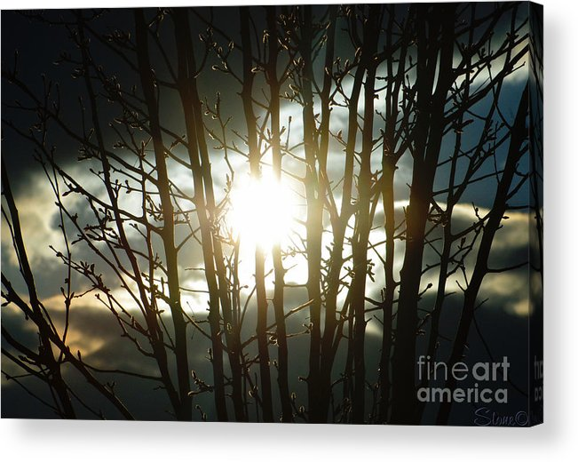 Sun Acrylic Print featuring the photograph The In Between by September Stone
