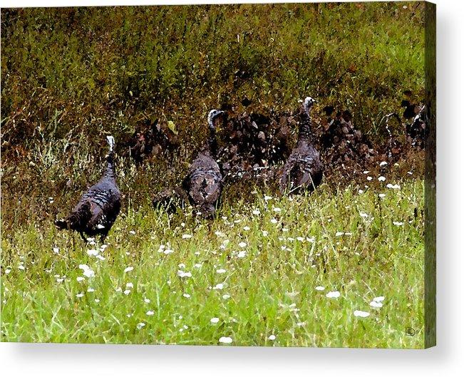 Turkey Acrylic Print featuring the painting Three Turkeys by David Lee Thompson