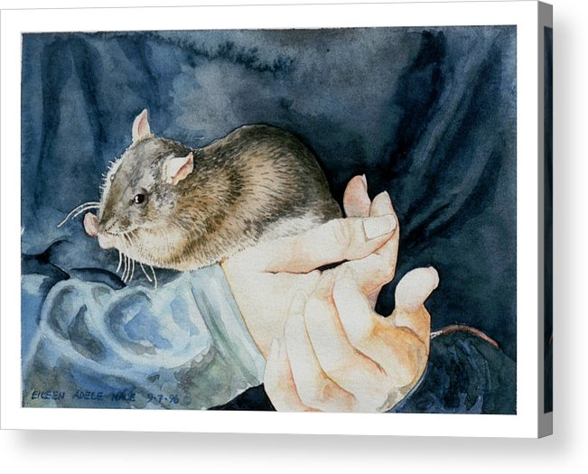 Portrait Acrylic Print featuring the painting Tilly by Eileen Hale