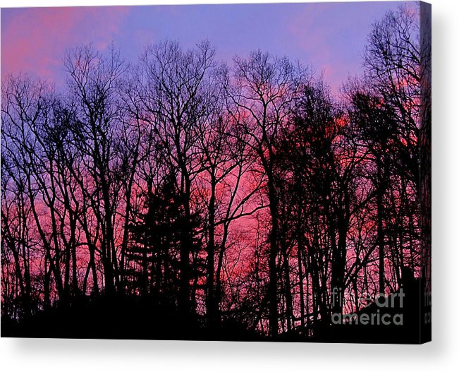 Twilight Trees Forest Sunsets Silhouette Nature Prints Natural Landscapes Skyscapes Colorful Skies Pink And Purple Clouds Acrylic Print featuring the photograph Twilight Trees by Joshua Bales
