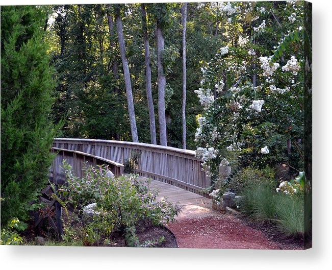 Nature Acrylic Print featuring the photograph Walk With Me by Eva Thomas