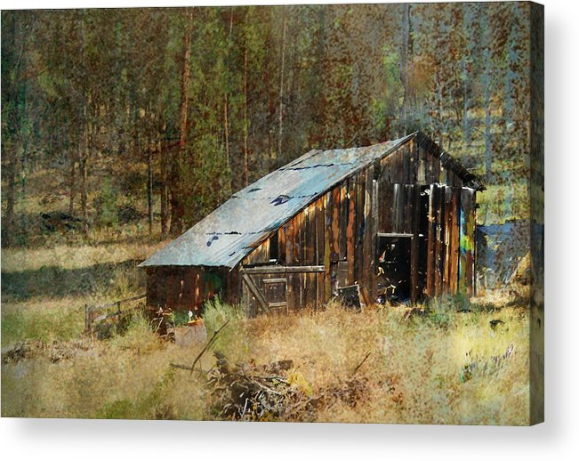 Barn Acrylic Print featuring the photograph Yesteryear Shed 2 by Dale Stillman