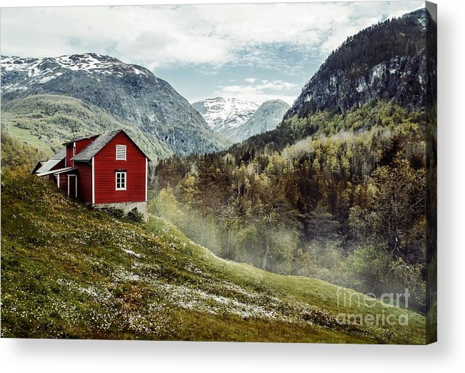 Hut Acrylic Print featuring the photograph Wooden Cottage In The Valley. Flowers by Oleksandr Mazur