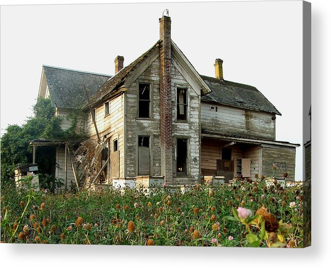 Derelict Acrylic Print featuring the photograph In The Clover by Everett Bowers