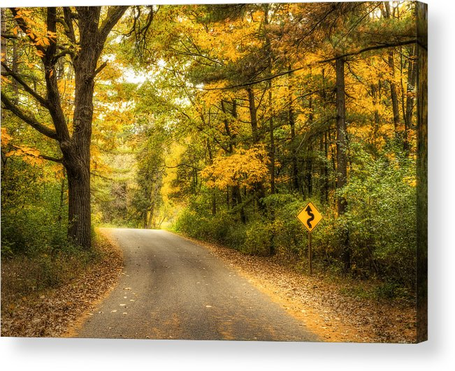 Autumn Acrylic Print featuring the photograph Curves Ahead by Scott Norris