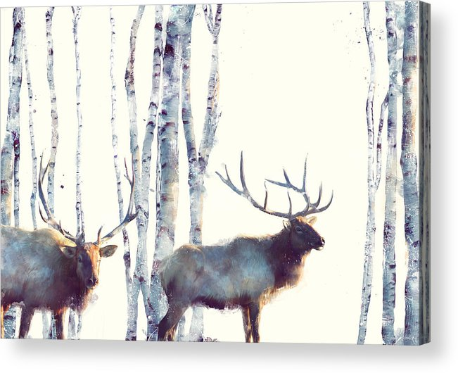 Elk Acrylic Print featuring the painting Elk // Follow by Amy Hamilton
