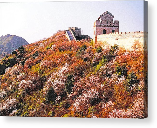 Great Wall Of China Acrylic Print featuring the photograph Great Wall In Springtime by Dennis Cox