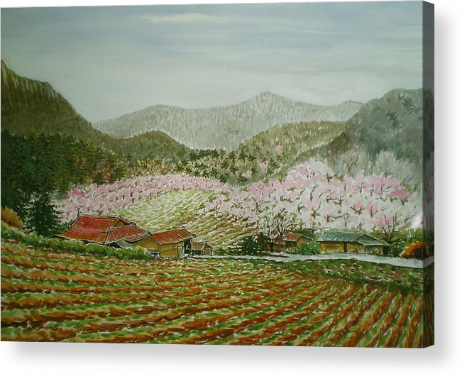 Landscape Acrylic Print featuring the painting Peach Village by Bryan Ahn