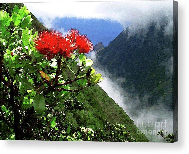 Ohia Lehua Acrylic Print featuring the photograph Peles Flower by James Temple