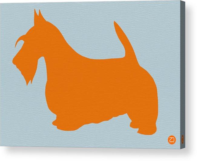 Scottish Terrier Acrylic Print featuring the painting Scottish Terrier Orange by Naxart Studio