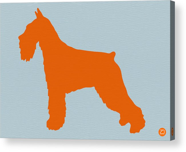 Standard Schnauzer Acrylic Print featuring the photograph Standard Schnauzer Orange by Naxart Studio