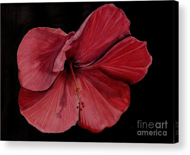 Hibiscus Acrylic Print featuring the painting Hibiscus Happiness by Kathy Michels