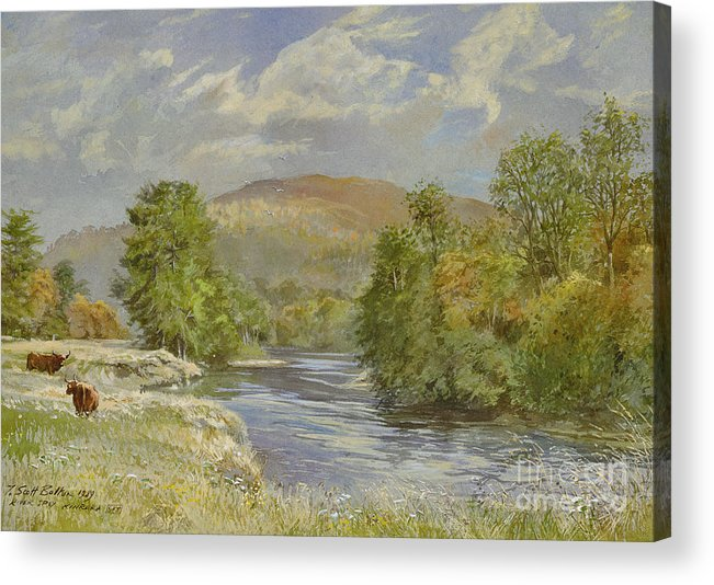 Landscape; River Scene; Highland Cattle; Meadow; Pastoral; Scottish; Hill; Hills; Tree; Trees; River Spey; Kinrara; Bull; Bulls; River; Water; Birds; Blue Sky; Sky Acrylic Print featuring the painting River Spey - Kinrara by Tim Scott Bolton