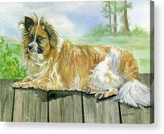 Dog Acrylic Print featuring the painting Chisel by Mary Tuomi