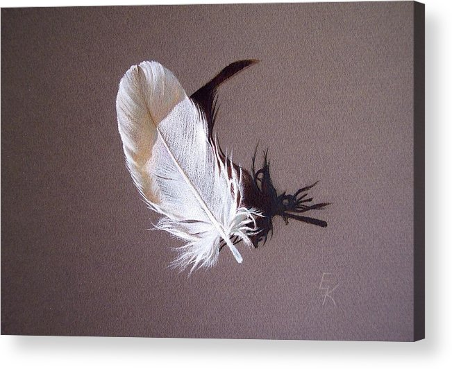 Still Life Acrylic Print featuring the drawing Feather And Shadow 1 by Elena Kolotusha