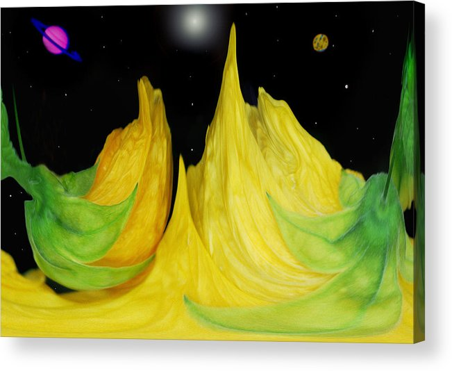 Digital Art Acrylic Print featuring the photograph Floral Fantasy by Terence Davis