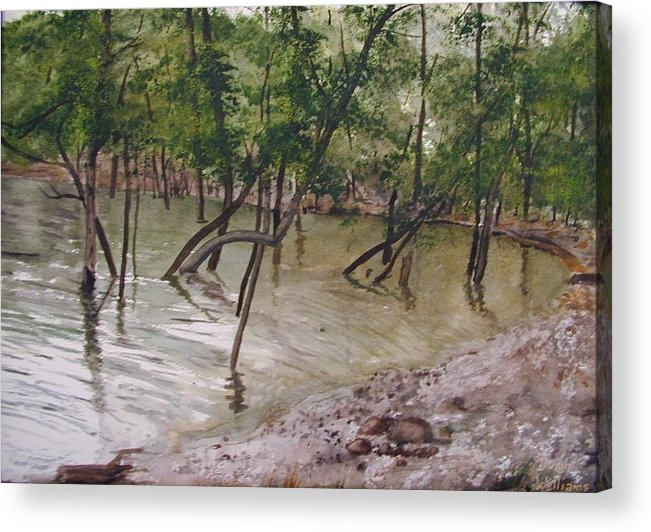 Water Acrylic Print featuring the painting Good Fishing by Dwight Williams