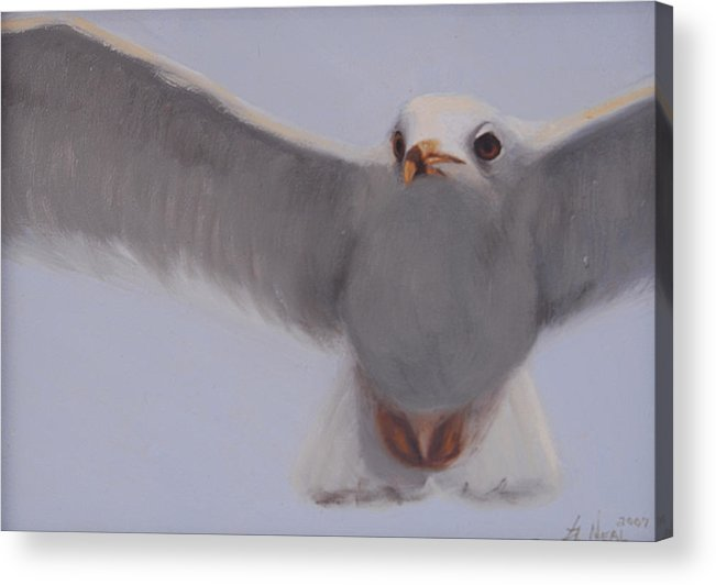 Painting Acrylic Print featuring the painting Graceful by Greg Neal
