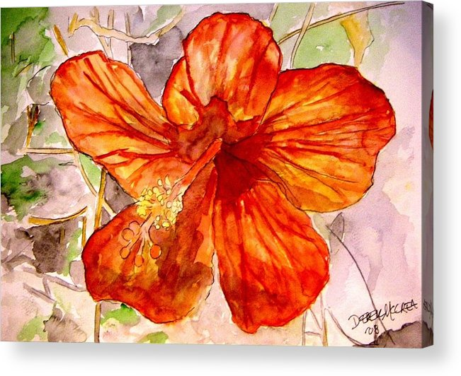 Hibiscus Acrylic Print featuring the painting Hibiscus 2 by Derek Mccrea