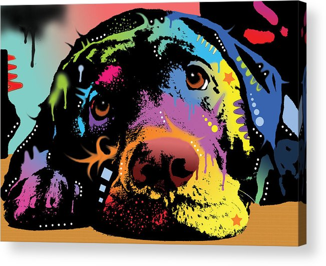 Labrador Acrylic Print featuring the painting Lying Lab by Dean Russo