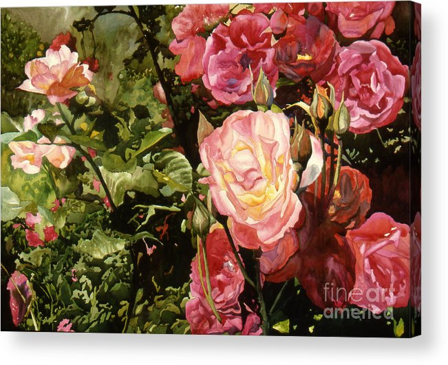 Watercolor Acrylic Print featuring the painting Rose Garden by Teri Starkweather