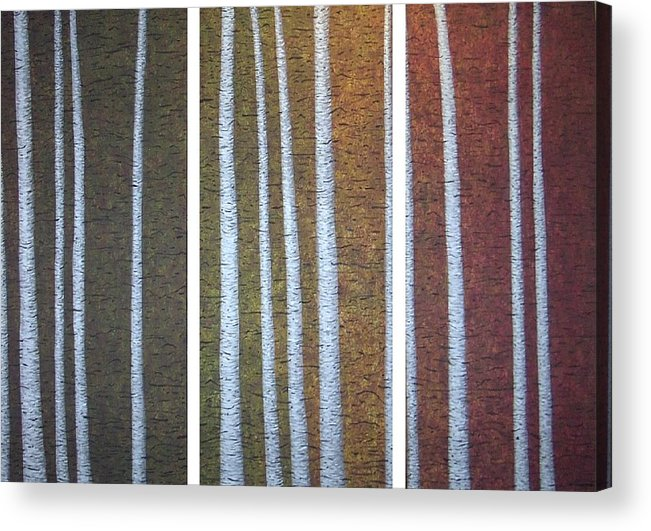 Birch Aspen Trees Abstract Landscape Triptych Acrylic Print featuring the painting The Beholders by Sally Van Driest