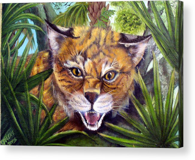 Bobcat Acrylic Print featuring the painting Watching Florida Bobcat by Darlene Green