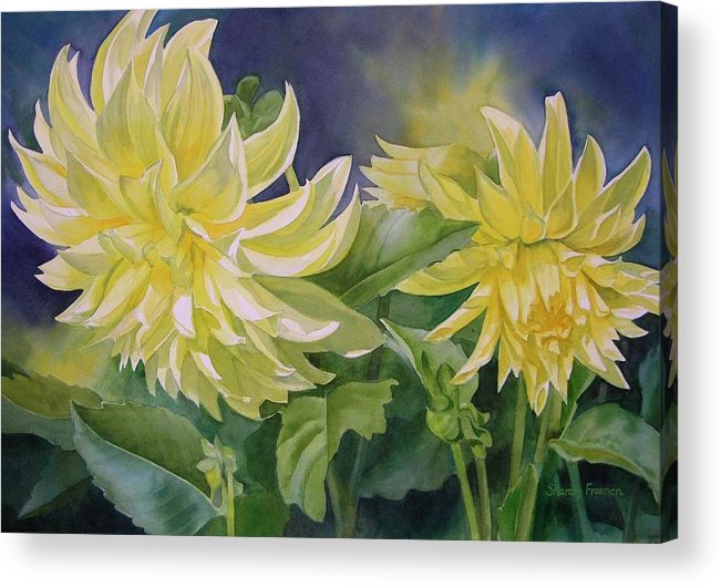 Watercolor Acrylic Print featuring the painting Yellow Dahlia Duet by Sharon Freeman
