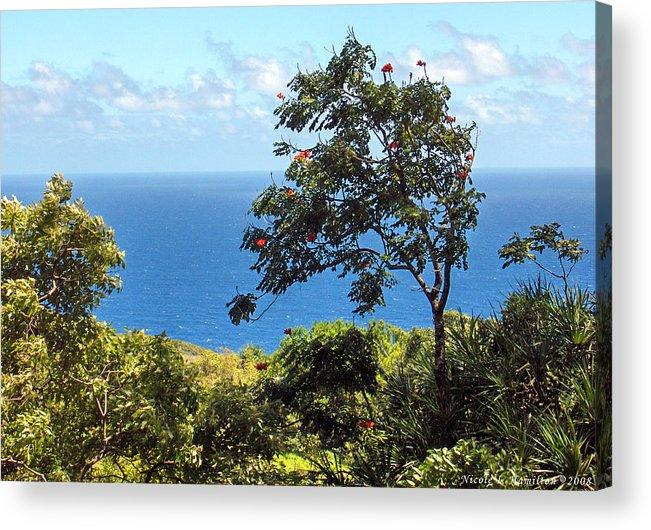 Landscape Acrylic Print featuring the photograph Island Breeze by Nicole I Hamilton