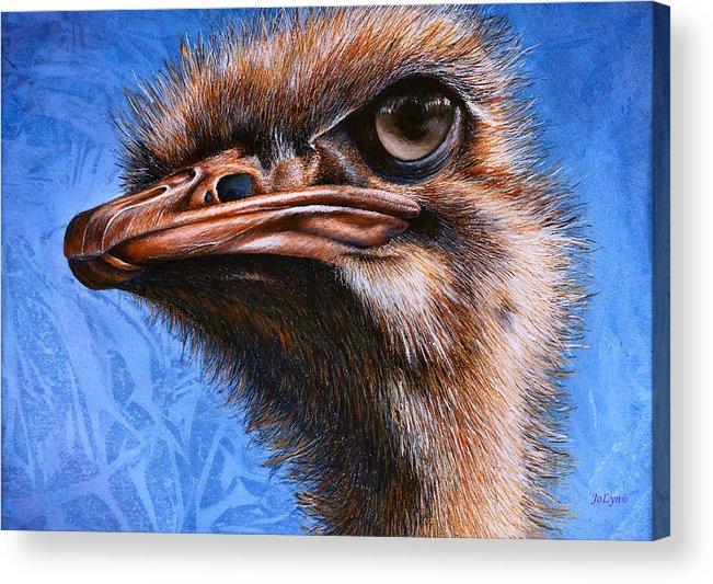 Ostrich Acrylic Print featuring the print Fugley by JoLyn Holladay