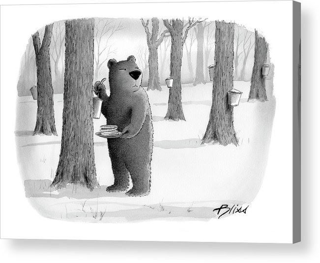 Bear Acrylic Print featuring the drawing New Yorker April 2nd, 2007 by Harry Bliss