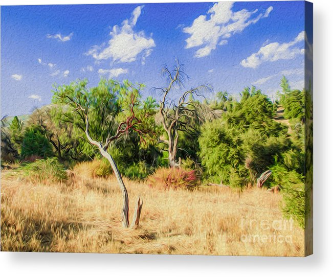 Outdoors Acrylic Print featuring the digital art A Place Of Serenity IIi by Kenneth Montgomery