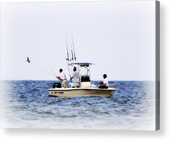 Fish Acrylic Print featuring the photograph Fishing The Shallows by Travis Truelove