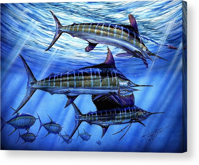 Blue Mrlin Acrylic Print featuring the painting Grand Slam Lure And Tuna by Terry Fox